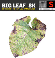 3d ultra hd 8k leaf