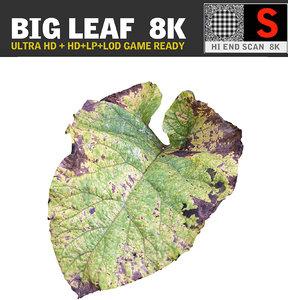 3d ultra hd 8k leaf