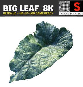 max ultra hd 8k leaf
