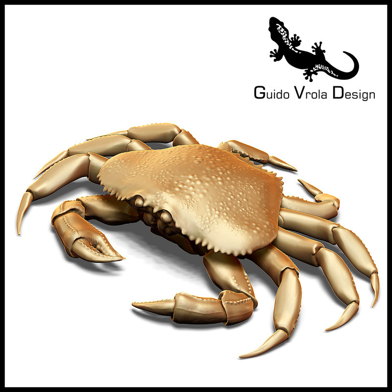 3d crab dungeness printable