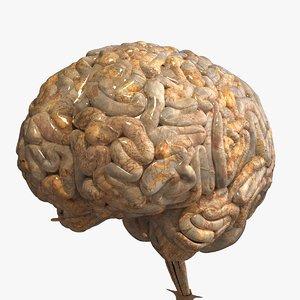 obj realistic human brain