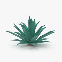 Desert Plant Other Cactus 02 Low Poly