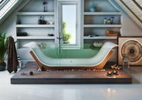 Bathroom interior scene