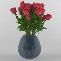 max vase roses