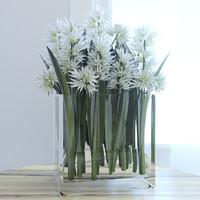 max flower white