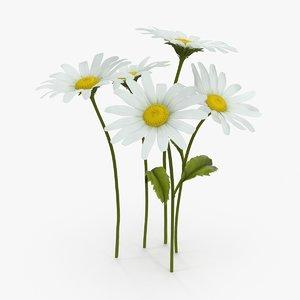 3d max daisy natural group