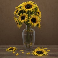 sunflowers 3d max