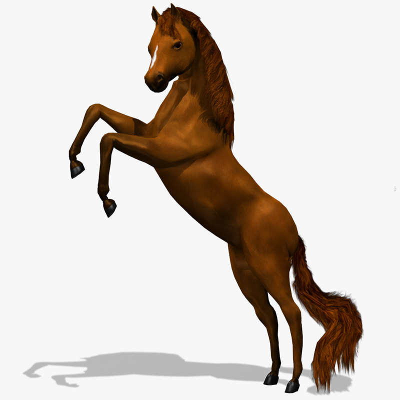 3d model horse animation