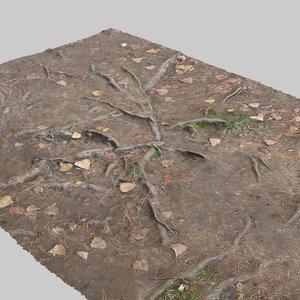 max photoreal roots