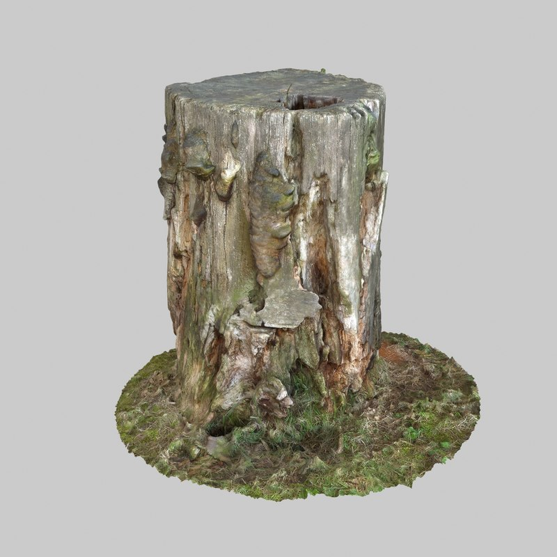 photogrammetry scan 3d max