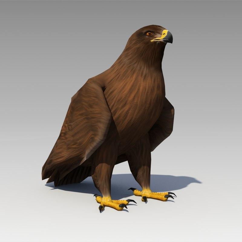 3d model golden eagle animations