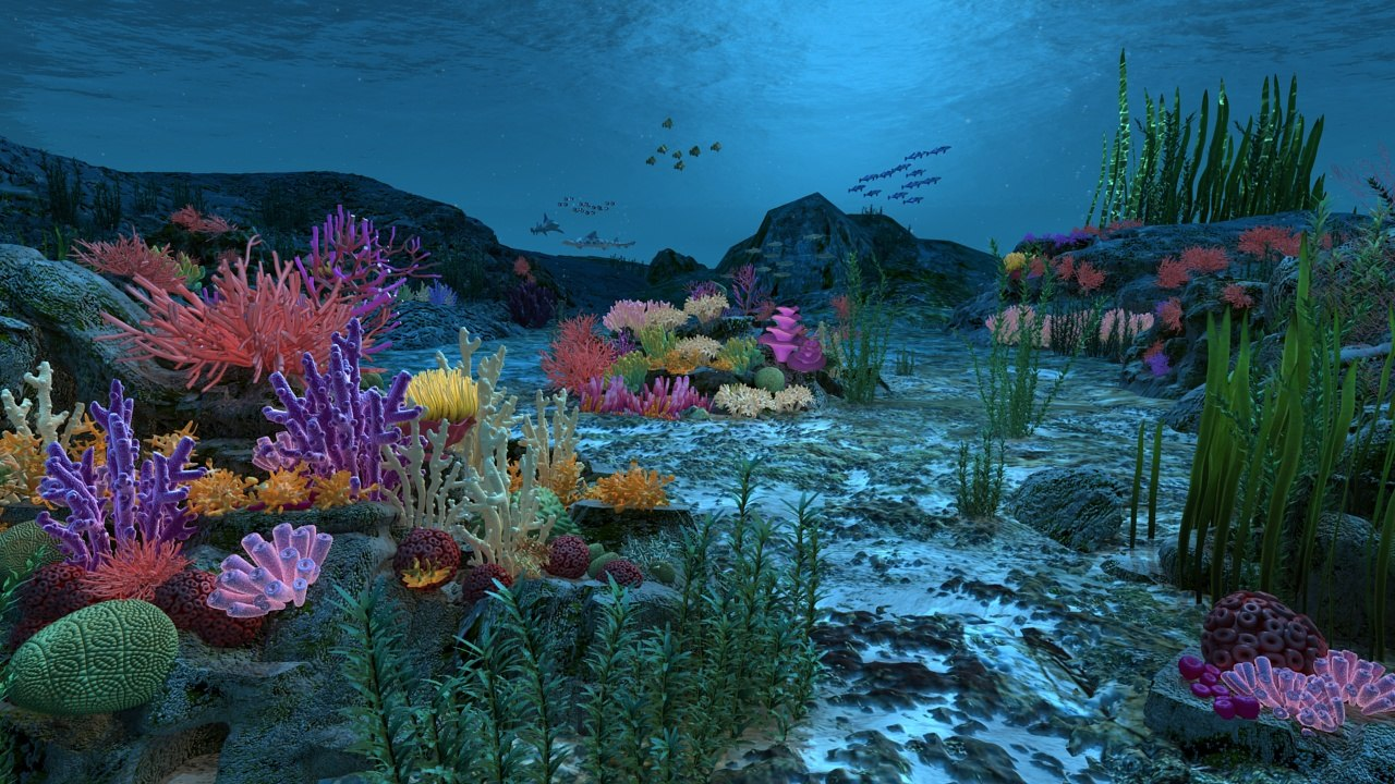 Ocean floor coral reefs 3d max for Ocean floor description