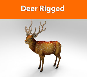deer rigged ready 3d max