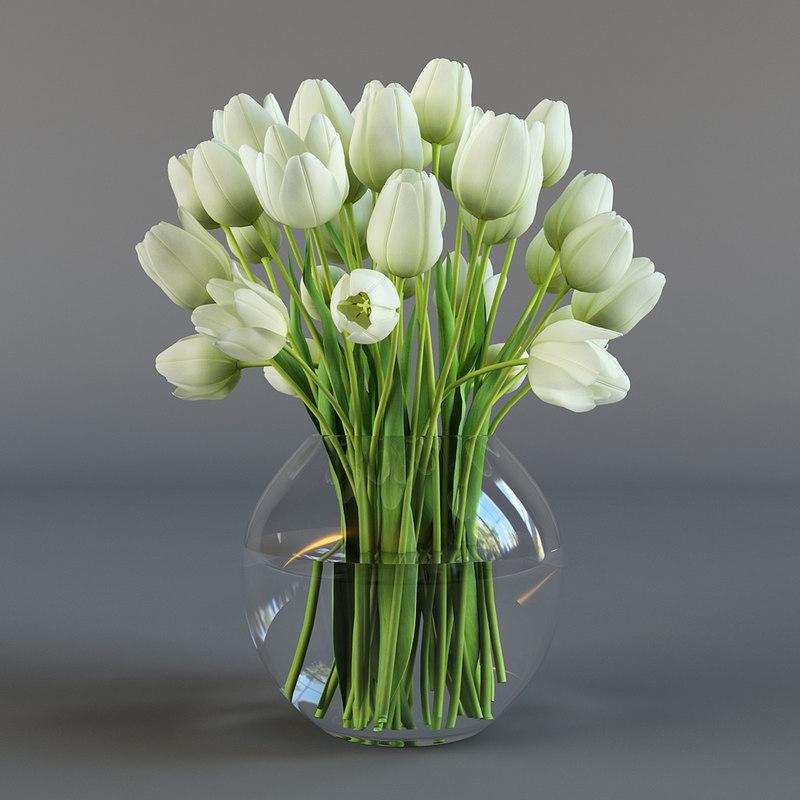 3d model white tulips