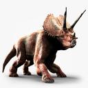 Triceratops 3D models
