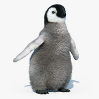 emperor penguin chick fur max