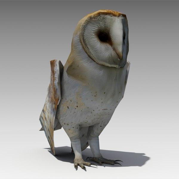 barn owl animations 3d model