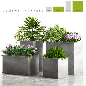 cement planter box plants 3d model