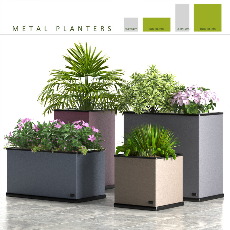 3d box plants metal model