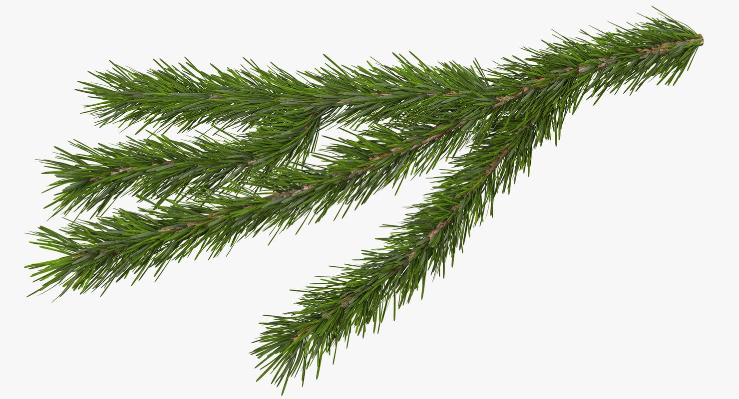 3d christmas fir branch 3
