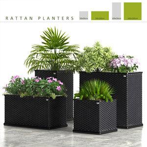 rattan planter box plants 3d model