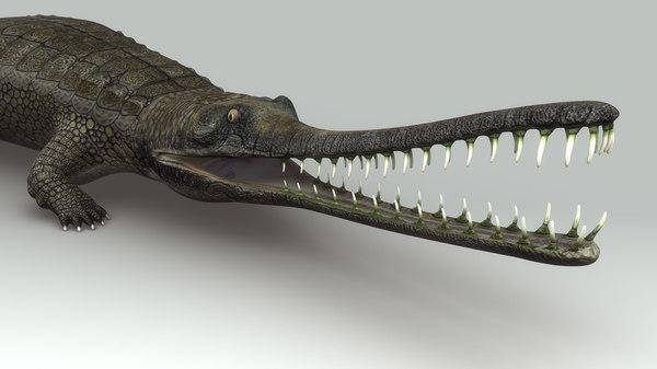 obj gharial gavial crocodile