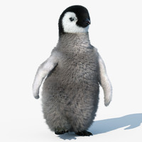 Emperor Penguin Chick(FUR)(RIGGED)