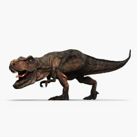 tyrannosaurus coelurosaurian dinosaur max