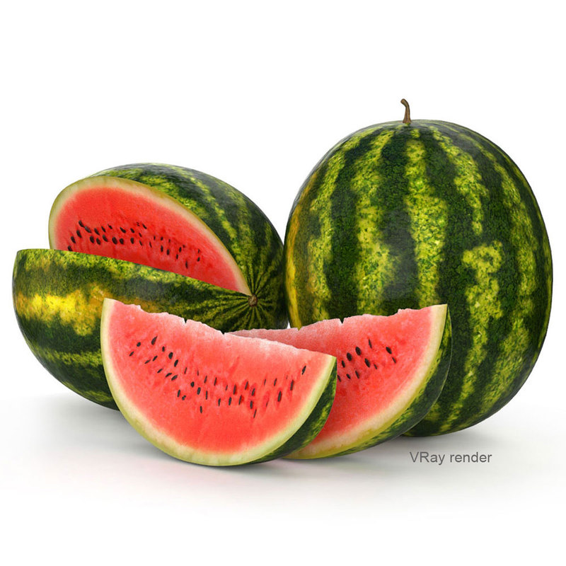 3d watermelon slice model