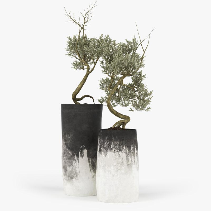 3d max olive tree