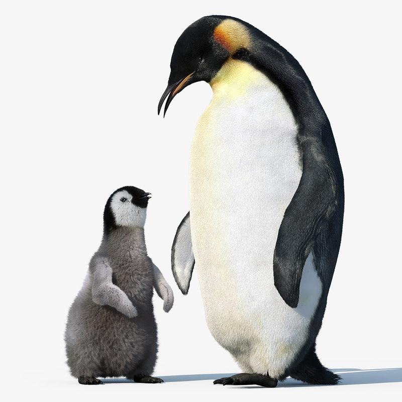 emperor penguin group fur 3d max