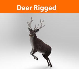 3d model deer rigged ready