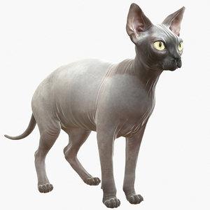 3d model of sphynx cat