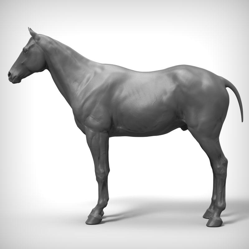 horse ztl zbrush 3d obj