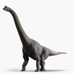 3d model of brachiosaurus dinosaur animate