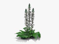 3d plant grecian pattern