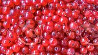 Berries (Pack)