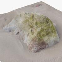 rock scan 24 3d model