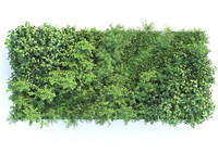 design green wall 3d model