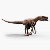 velociraptor dinosaur 3d model