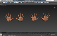3d hands characters male female model