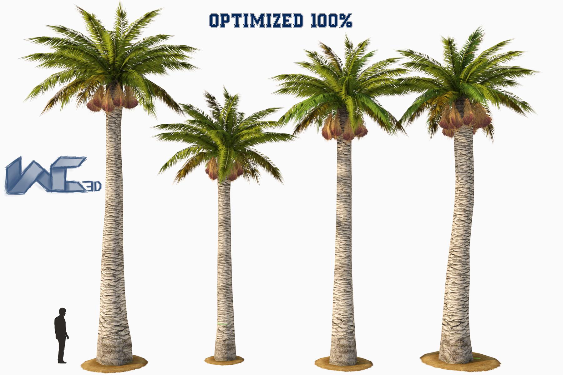 3d model palm tree washingtonia