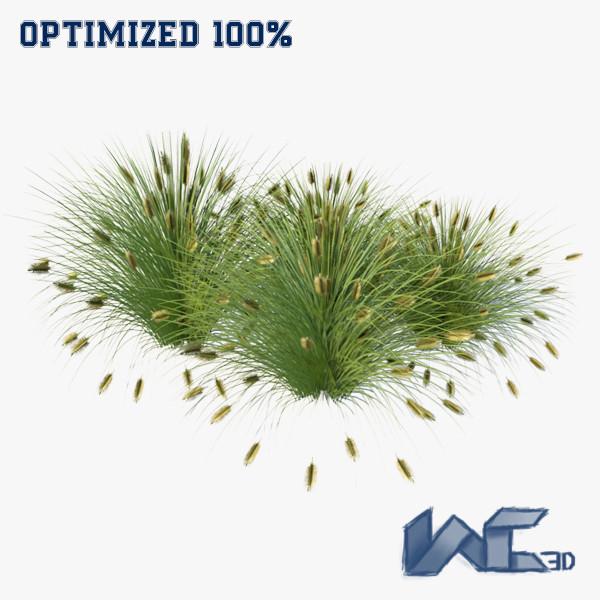 fountain grass 3d model
