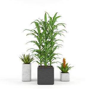 tropics flowers - set fbx