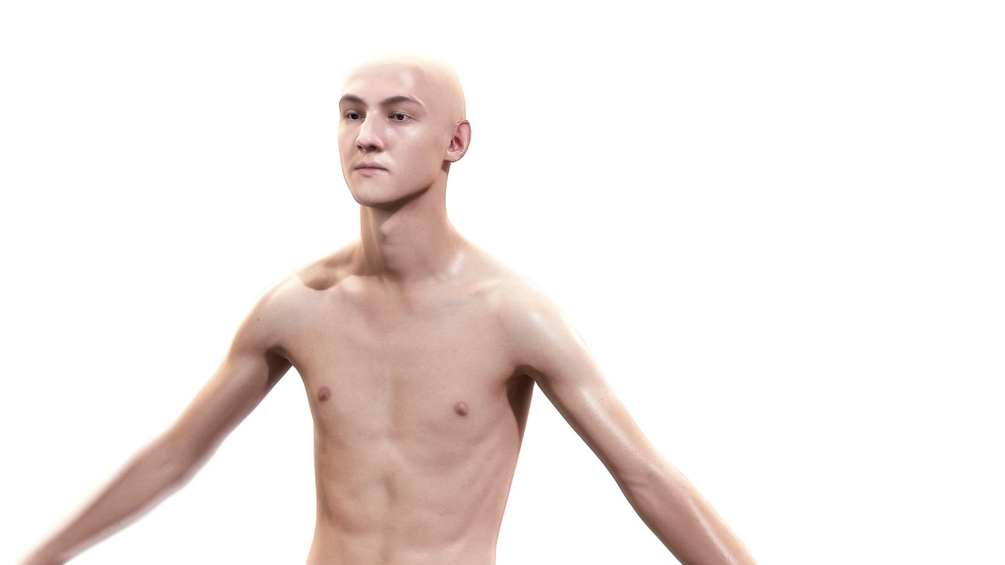 3d Man Character Body Anatomy Model