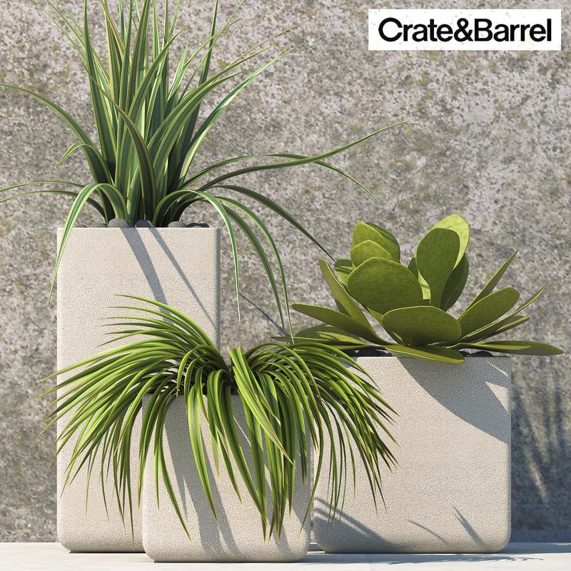 plants vases 3d model