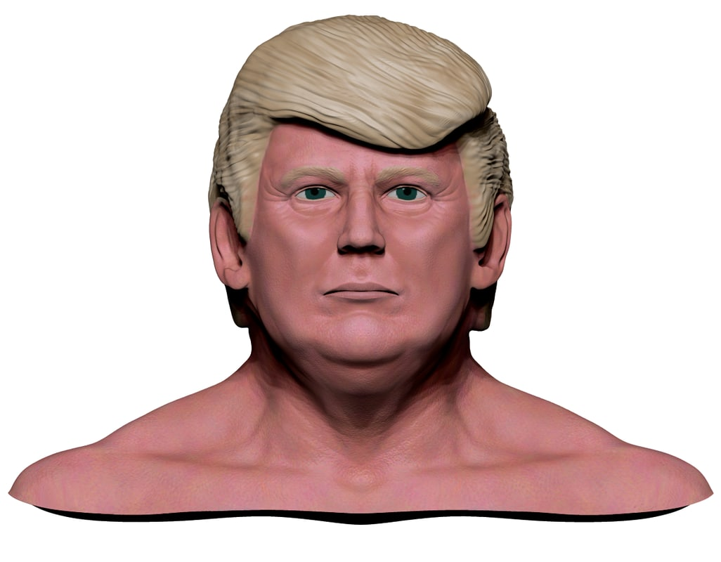 3d donald trump model for Donald model