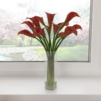3d red calla lilies