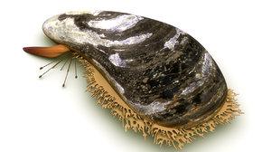 mytilus mussels obj
