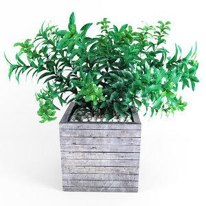 plant tree 01 3d max